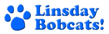 Linsday Logo